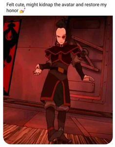 Avatar The Last Airbender Funny, The Last Avatar, Avatar Funny, Avatar Airbender, Avatar Zuko, Team Avatar, Atla Memes, Prince Zuko, Avatar Series
