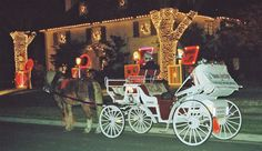 highland park, dallas, texas christmas photos   ... drawn carriage rides for Christmas and the entire holiday season