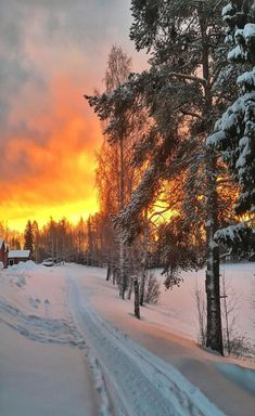 Beautiful Sunset, Beautiful World, Beautiful Places, Beautiful Pictures, Winter Landscape, Landscape Art, Winter Photography, Landscape Photography, Snowy Pictures
