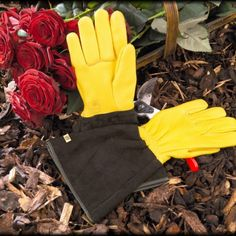 Gold Leaf Ladies Tough Touch Garden Gloves are high quality leather gauntlet gloves for protection when pruning. Kew Gardens Shop, Leather Gauntlet, White Hand Towels, Fine Gardening, Gardening Tools, Organic Gardening, Ladies Gents, Gardening Gloves, Garden Gifts