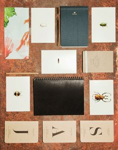 Scribble and Scrawl / Holiday Gift Guide