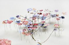 Flower constructions / Anne Ten Donkelaar