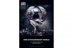 royal ballet poster - Google Search