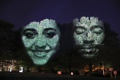 Outdoor video artwork by Craig Walsh features the faces of six local artists projected on trees. Equestrian Statue, Artist Project, After Dark, Local Artists, Installation Art, How To Fall Asleep, Filmmaking, Art Exhibitions, Sky
