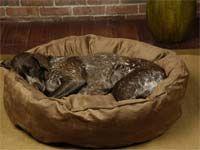 Big Shrimpy Nest Bed