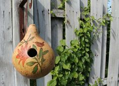 Use a fall gourd to make your own very creative bird house