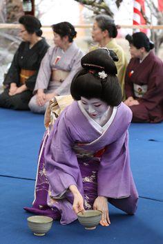 Geisha conducting Nodate (outside tea ceremony) in Kyoto, Japan      purple, lavender