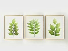 Green botanical prints Set of posters Plants gallery wall