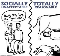 The only time you needed milk was from your own mother when you were a baby. ~KK