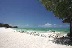 Beach on Andros Bahamas