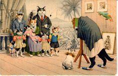 Max kunzli - # 4724, Alfred Mainzer Inc.. Long Island City 1, Nova York in Colecionáveis, Cartões postais, Animais | eBay