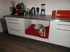 IKEA hack: Faktum kitchen dog bed Materials: Faktum base cabinet with 3 drawers, Captita legs, Numerär worktop, Abstract drawer front, Description: After putting two 80cm Faktum base cabinets and a 246cm Numerar worktop together, a huge space between the bases cabinets was left.