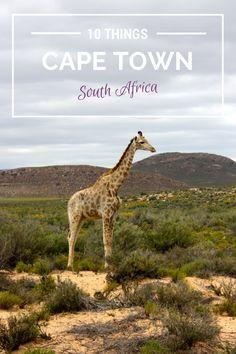 10 Things To Do In Cape Town, South Africa http://treasuretromp.com/2014/07/10-things-cape-town-south-africa/?utm_campaign=coschedule&utm_source=pinterest&utm_medium=Nicole%20%40%20Treasure%20Tromp%20(treasures.)&utm_content=10%20Things%20To%20Do%20In%20Cape%20Town%2C%20South%20Africa