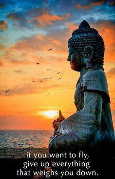 ^ƸӜƷ^  #Buddha #quotes