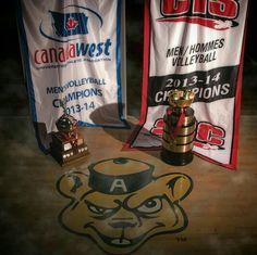 University of Alberta Golden Bears Men's Volleyball Team. Canada West Champions and CIS National Champions for the 2013-2014 Season. #yeg #alberta #gbears #ualberta