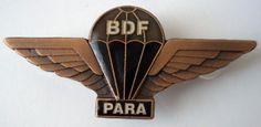 Botswana parachute wing bronze