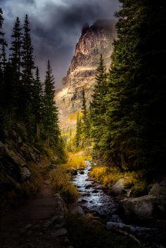 Fern Creek in the Rocky Mountains