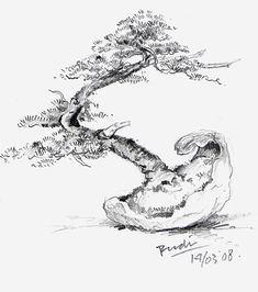 Bonsai Illustrations of Rudi Julianto