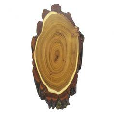 Akazie Natur Trophäenschilder für  Damhirsch, Steingeiss und Hirsche ca. 32x19 cm, sind aus abgelagertem Holz gefertigt und somit garantiert rissfrei.Auf der Rückseite der Trophäenschilder kann ein Kieferfach und eine Aufhängevorrichtung eingefräst werden.Bitte wählen ob mit oder ohne Kieferfach. Fallow Deer, You're Welcome, Shop Signs, Stones, Nature, Wood