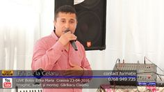 FIFI de la Celaru LIVE Colaj SARBA part.1 | Botez Erika Maria | Craiova ...