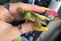 La manicure di questa tartarughina è tenerissima, ma non siamo sicure che gradisca!