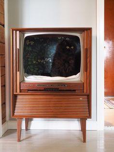 Keltainen kahvipannu: DIY - kissanpeti vanhasta televisiosta, old tv turned into cat bed