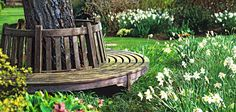 Love this idea for seatng Tree Seat, Tree Bench, Lawn And Garden, Garden Art, Home And Garden, Bench Around Trees, Garden Projects, Garden Ideas, Outdoor Fun For Kids
