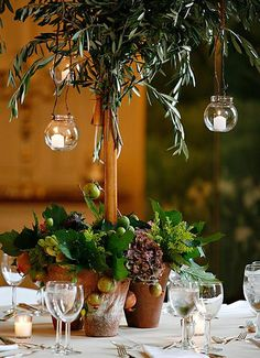 olive tree centerpiece w/hanging candles, love the symbolism #RHDreamWeddingSweepstakes
