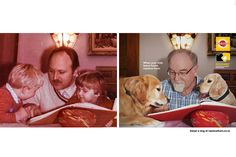 Pedigree: Child Replacement Program - Print (Slideshow) - Creativity Online