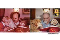 Pedigree: Child Replacement Program - Print (Slideshow) - Creativity Online