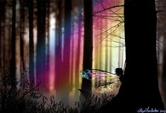 Image The Art of Liza Lambertini - A Faery peeking - http://www.faeriewood.com/Pages/Sillhouettes_Page.html