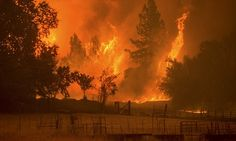 Butte Fire threatens 6000 Californian homes in Sierra Nevada mountains | Daily Mail Online