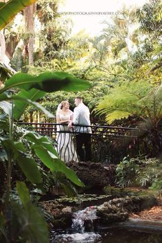 Sunken Gardens Florida St. Petersburg wedding photos Photography by Avery
