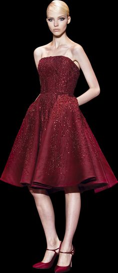 #ELIE SAAB Haute Couture Fall Winter 2013-2014