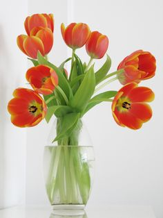 Orange tulips. #Flowers #Spring #Decor