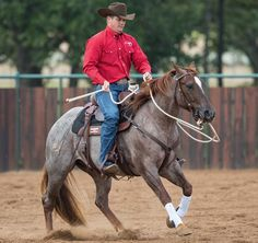 Clinton Anderson explains how he teaches horses to move forward off the rider's leg.