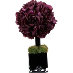 Herve Gambs Purple Couture Rose Topiary & Black Glass Cube ($330) ❤ liked on Polyvore