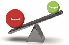 omega3 zinzino - LymeHerstel Omega 3
