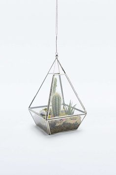 Urban Grow - Terrarium pyramide - Urban Outfitters