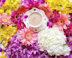 Happy Sunday ☕ . . #momentsofmine #onmytable #coffeeandseasons #floralarrangement #flatlaytoday #flatlayforever #adoremycupofcoffee #mywhitetable #styleonmytable #naughtyteas #fabulous_shots #pocket_creative #still_life_gallery #tv_stilllife #inspiredbypetals #click_dynamic #ccseasonal #petalsandprops #snapseed #pocket_flowers #styleonstillness #cups_are_love #stilllife_perfection #flowerstagram #theflatlaysquad #playingwithpetals #hydrangea #lovely_squares_1 #cocoa_shots