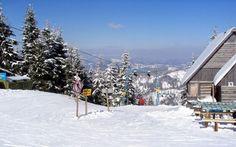 Гірськолижний курорт Славське славиться прекрасними ландшафтами з вічнозеленими хвойними лісами, які є основою не тільки повноцінного відпочинку, а й...