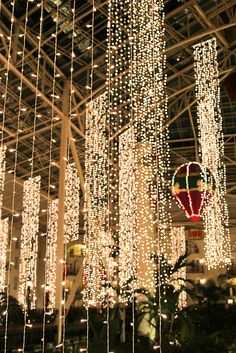 Gaylord Opryland Hotel - lush indoor gardens, winding rivers ...