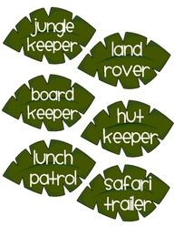jungle themed classroom - Google Search