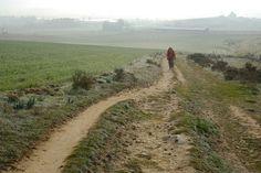 Etapa 12 del Camino Francés: Agés - Burgos | Guía del Camino de Santiago | EROSKI CONSUMER