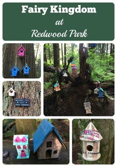 Fairy magic dances through the woods at Redwood Park in Surrey. Find the Fairy Kingdom and go crazy on the playground. A great place for family fun!