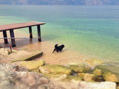 #GCblogtour13 Bagnetto nel lago di Garda @GardaConcierge