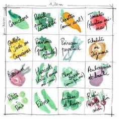 Plan de potager en carrés à mi-mai. Cliquez pour zoomer