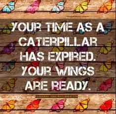 One of my favorite motivational quotes. It's time to fly.