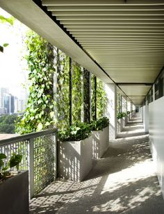 Image 8 of 9 from gallery of AD Round Up: Architecture in Singapore. Photograph by Patrick Bingham-Hall Singapore Architecture, Art Et Architecture, Design Hotel, House Design, Green Facade, Green School, Facade Design, Green Building, Landscape Design