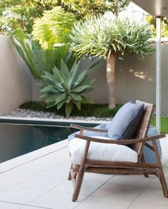 Poolside planting includes an agave and a dragon tree.
